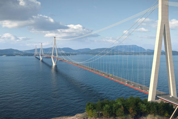 Long-span bridges